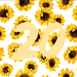 20 things I kinda learned at 20